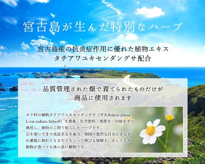 STAFFおすすめ「ボタニカルミストシャワーフォレストSpa」SuiSavon-首里石鹸-オキナワハナサキマルシェギャラリーショップにて販売開始!