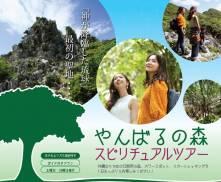 やんばるの森スピリチュアルツアー「神が降臨した琉球」最初の聖地・・・販売開始のお知らせ